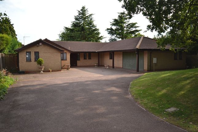 Thumbnail Detached bungalow to rent in Stoughton Close, Oadby, Leicester, Leicestershire