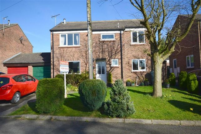 Thumbnail Detached house for sale in The Spinney, Ripley