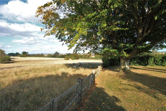 Picture No. 02 of Stone, Tenterden, Kent TN30
