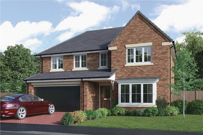 "Thumbnail Detached house for sale in ""The Bayford"" at Choppington Road, Bedlington"
