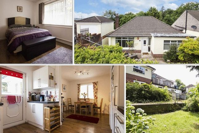 Thumbnail Detached bungalow for sale in Eveswell Park Road, Newport