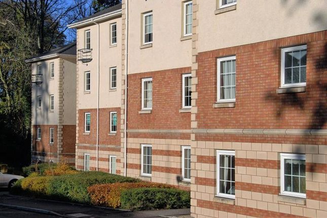 Thumbnail Flat to rent in Silver Birch Wynd, Port Glasgow