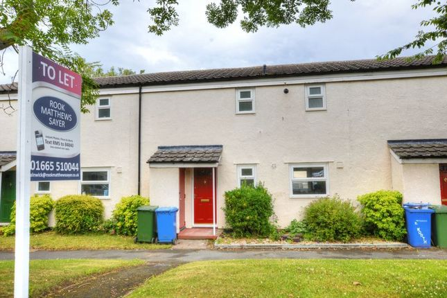 Thumbnail Terraced house to rent in Elworthy Road, Longhoughton, Alnwick