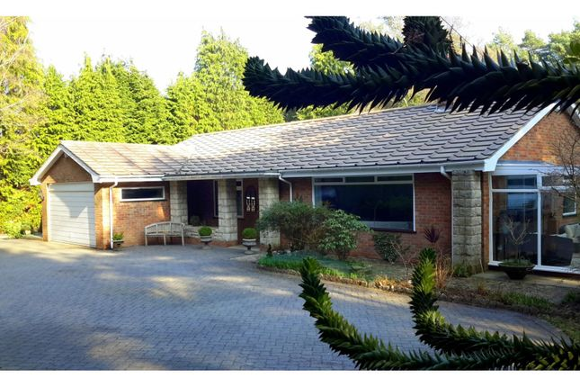 Thumbnail Detached bungalow for sale in Hurn Road, Ringwood