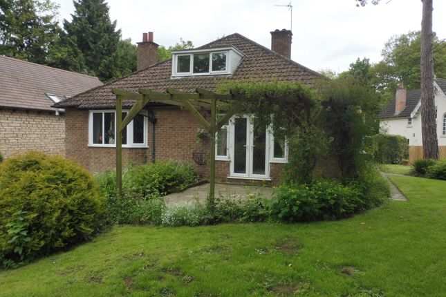 Thumbnail Detached bungalow for sale in Mount Pleasant, Uppingham Road, Oakham