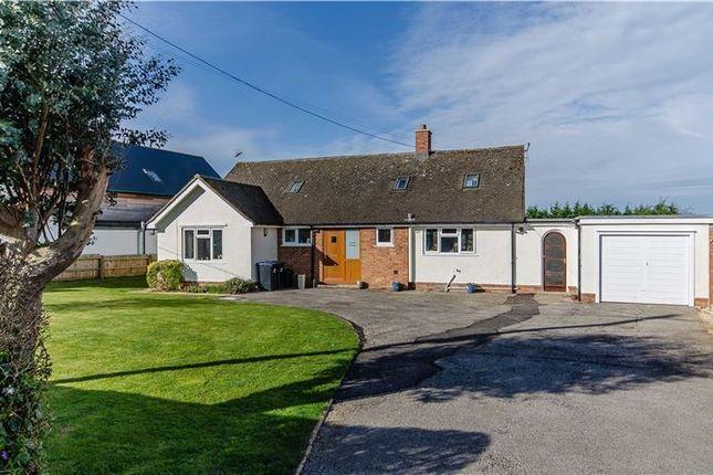 Thumbnail Detached bungalow for sale in The Hamlet, Chettisham, Ely