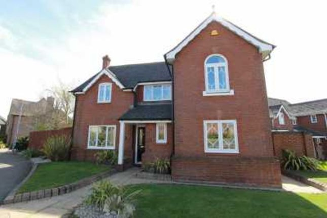 Thumbnail Detached house for sale in Celeborn Street, South Woodham Ferrers, Chelmsford