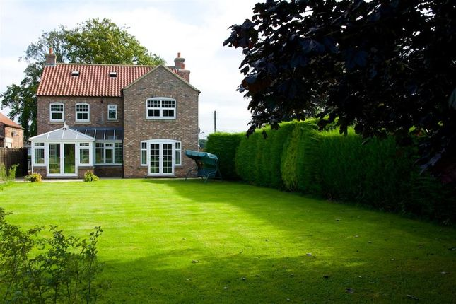 Thumbnail Detached house to rent in Sessay, Thirsk