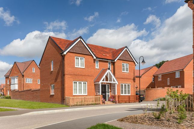 """Thumbnail Detached house for sale in """"The Thornsett"""" at Walford Close, Wimborne"""