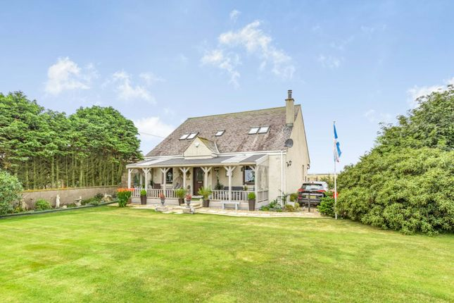 Thumbnail Detached house for sale in Lunan, Montrose