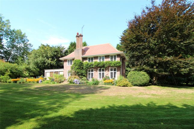 Thumbnail Detached house for sale in Wall Hill, Forest Row, East Sussex