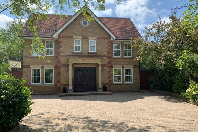 Thumbnail Detached house for sale in Eynsford Road, Crockenhill, Swanley