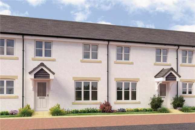 "Thumbnail Mews house for sale in ""Munro Mid Terr"" at Monifieth"