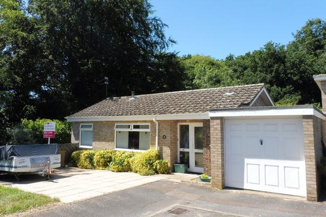 Thumbnail Bungalow for sale in Brentwood, Eaton, Norwich, Norfolk