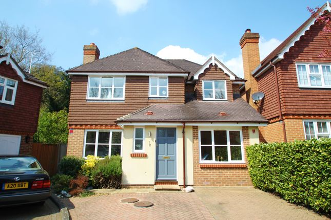 Thumbnail Detached house for sale in Harts Grove, Woodford Green, Essex