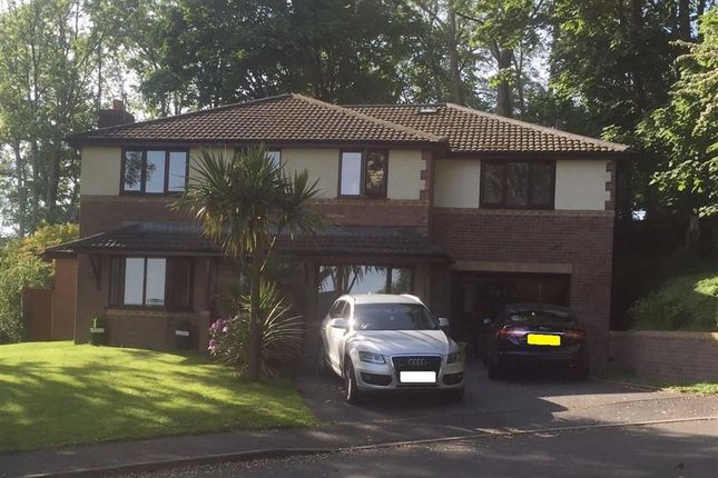 Thumbnail Detached house for sale in Llys Westfa, Swiss Valley, Llanelli