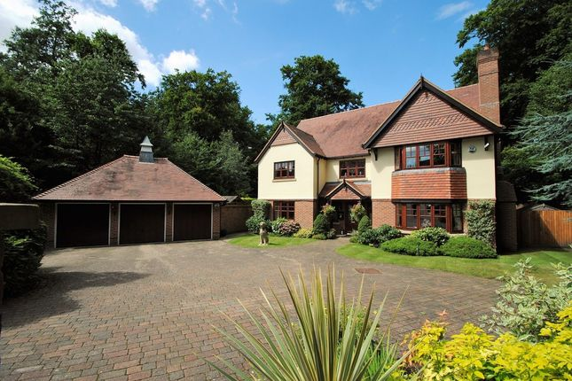 Thumbnail Detached house for sale in Hawley Grove, Blackwater, Camberley