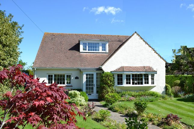 Thumbnail Property for sale in Time Being, North Lane, East Preston