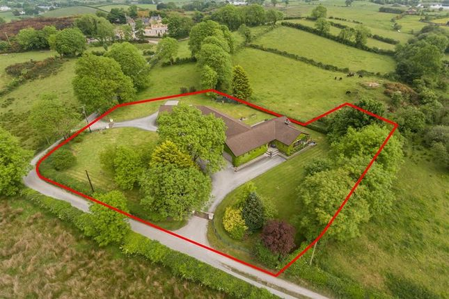Thumbnail Detached bungalow for sale in Belfast Road, Ballynahinch, Down