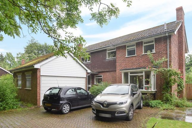 Thumbnail Detached house to rent in Station Road, Woolhampton
