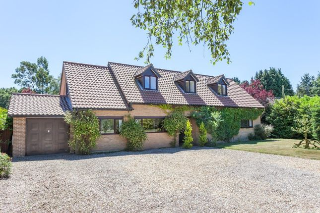 Thumbnail Detached house for sale in Elmham Road, Beetley, Dereham