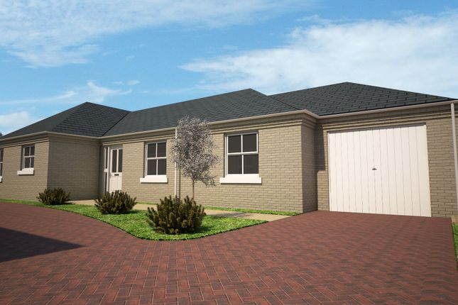 Thumbnail Detached bungalow for sale in Rosewood Close, Whittlesey, Peterborough
