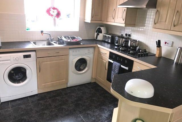 Thumbnail Property to rent in Lady Fern Road, Roborough, Plymouth