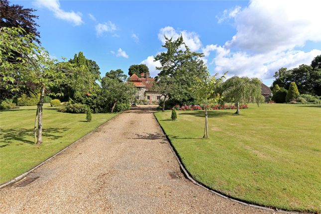 Thumbnail Detached house for sale in Milland Lane, Milland, Liphook, Hampshire
