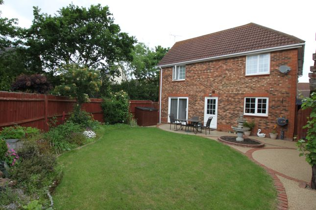 Thumbnail Detached house for sale in Dapifer Drive, Braintree