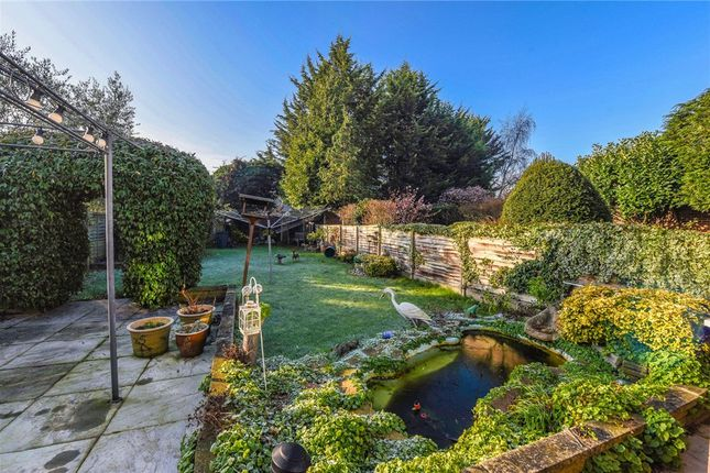 Garden of Waverley Avenue, Twickenham TW2