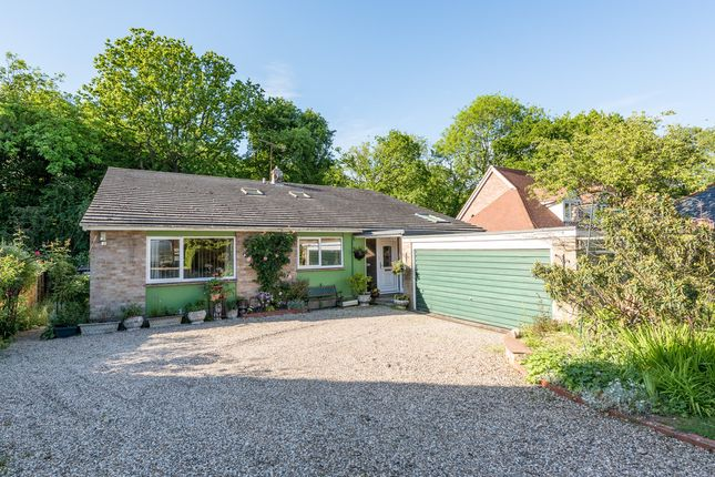Thumbnail Detached house for sale in Darcy Rise, Little Baddow, Chelmsford