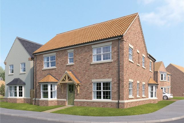 Thumbnail Detached house for sale in The Woodlark, Dishforth, Thirsk, North Yorkshire