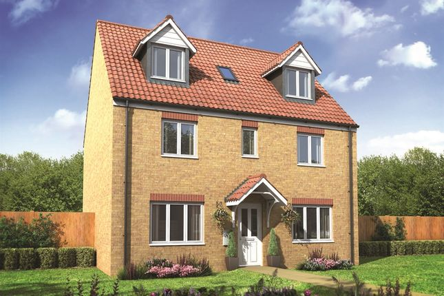 "Thumbnail Detached house for sale in ""The Newby"" at The Street, Beck Row, Bury St. Edmunds"