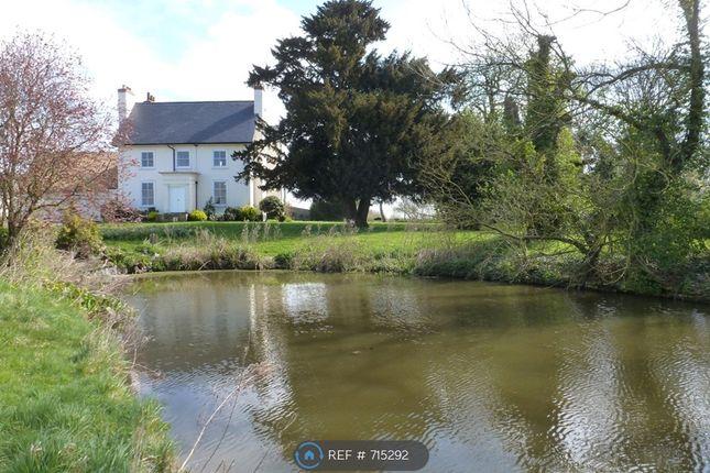 Thumbnail Detached house to rent in Vicarage Lane, Mundon, Maldon