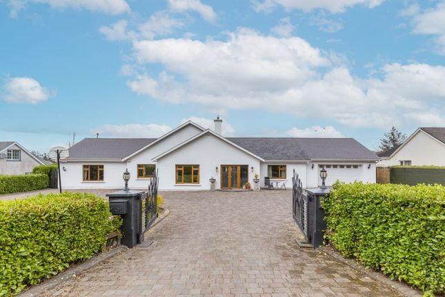 Thumbnail Detached house for sale in 'cluain Ban Lodge', Ballymurn, Leinster, Ireland