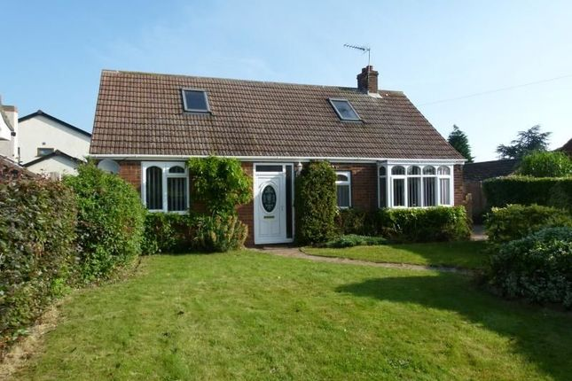 Thumbnail Bungalow to rent in Old Mill Lane, Whitton, Scunthorpe