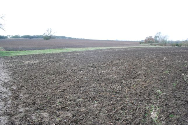 Thumbnail Farm for sale in Green Lane, Wymington, Rushden
