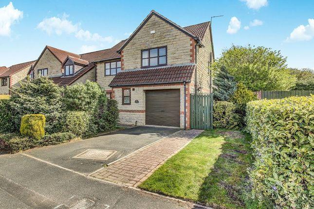 Thumbnail Detached house for sale in Beech Avenue, Cramlington
