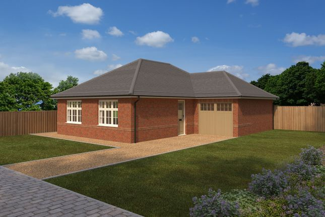 Thumbnail Bungalow for sale in The Maples, Ermine Street, Buntingford