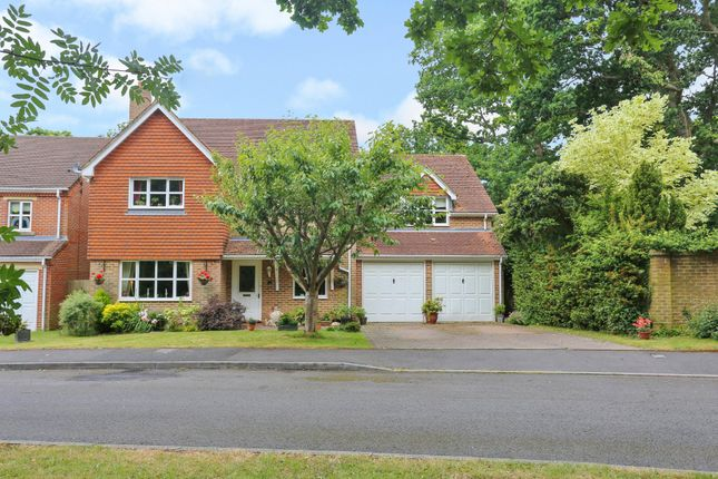 Thumbnail Detached house for sale in Grovebury, Locks Heath, Southampton