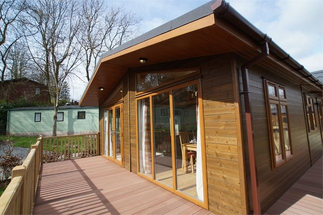Thumbnail Mobile/park home for sale in Fallbarrow Park, Rayrigg Road, Bowness On Windermere