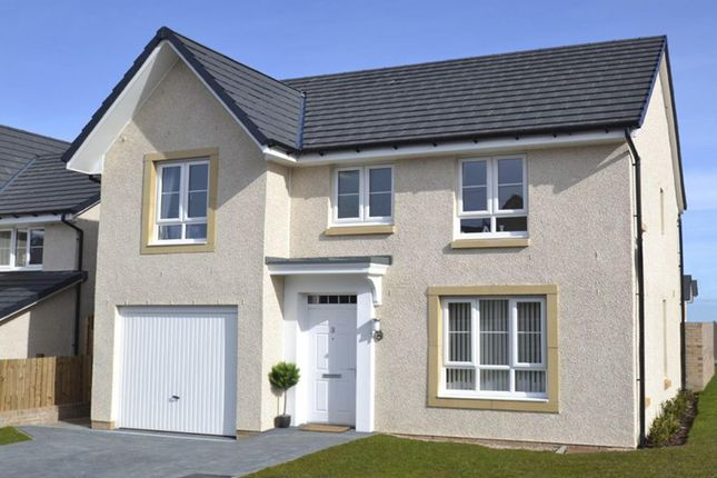"""Thumbnail Detached house for sale in """"Craigievar"""" at Scotstoun Avenue, South Queensferry, South Queensferry"""