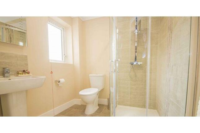 Shower-Room of Hatton Mews, Broad Green, Wellingborough, Northamptonshire NN8