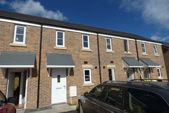 Thumbnail Property to rent in Maes Pedr, Johnstown, Carmarthen