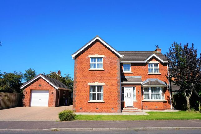 Thumbnail Detached house for sale in Ballycrochan Avenue, Bangor
