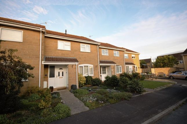 Thumbnail Terraced house to rent in Moorlands Park, Martock