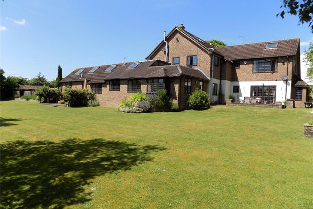 Thumbnail Detached house for sale in Main Road, Littleton, Winchester, Hampshire