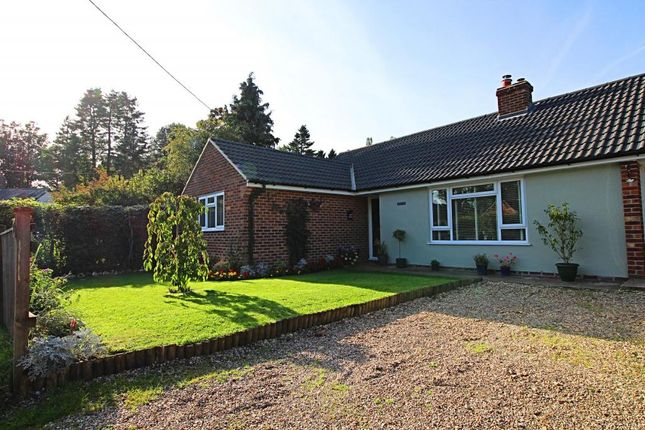 Thumbnail Detached bungalow for sale in Main Street, Chaddleworth, Newbury