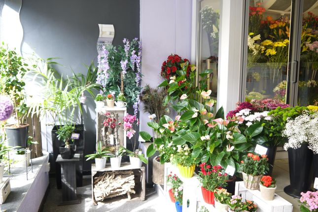 Photo 5 of Florist OL15, Lancashire