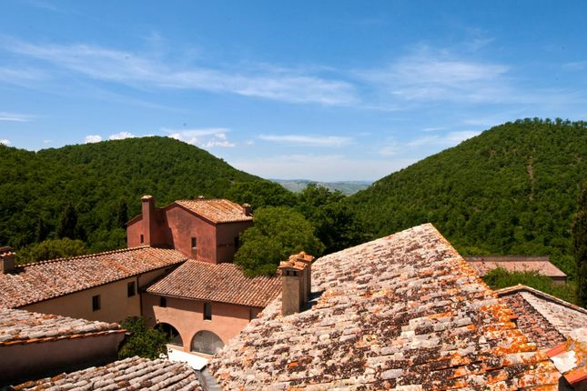 Thumbnail Country house for sale in Siena, Tuscany, Italy